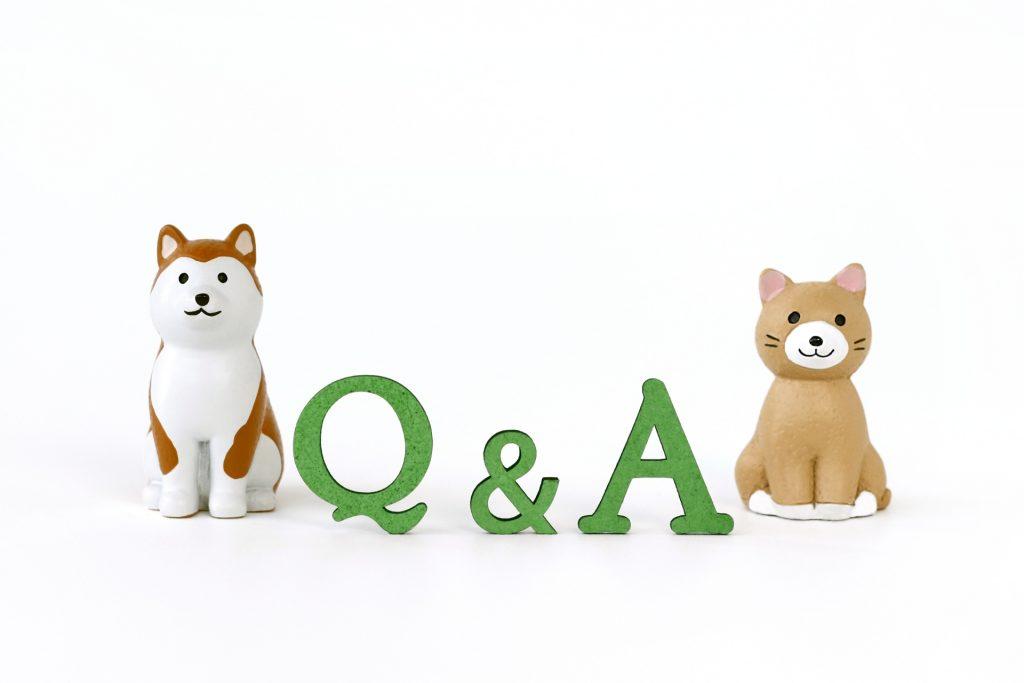 DiG UP CAREER(ディグアップキャリア)でよくある質問